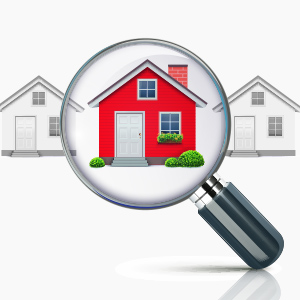 va home inspection requirements